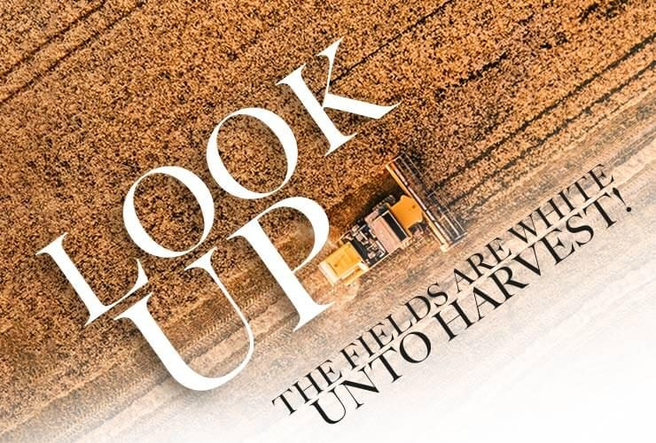 Look up! The fields are white unto harvest!